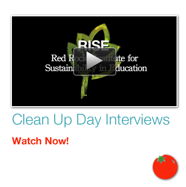 Clean Up Day Interviews