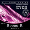 Cyco Bloom B 5 Ltr